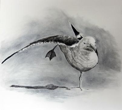 Måge på et ben